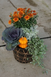 patterned fall patio pot mix
