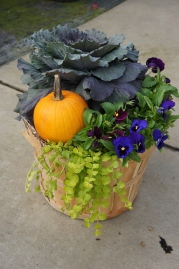 Fall mixed container: bucket