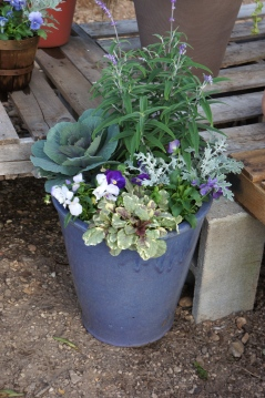 blue fall patio pot