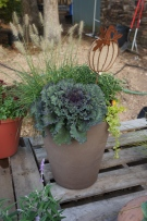 traditional fall patio pot