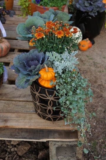 modern fall container
