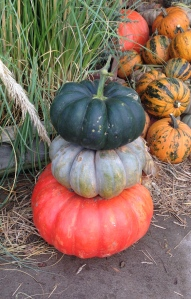 Colored Pumpkin Stack