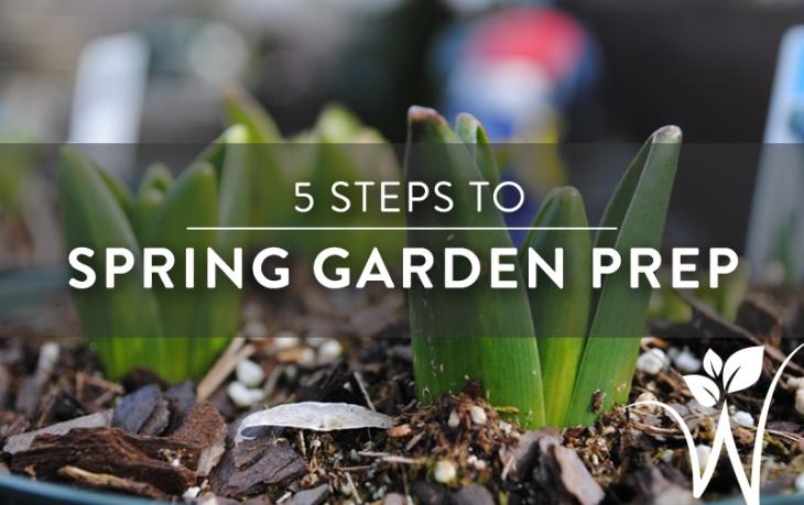 spring-prep2