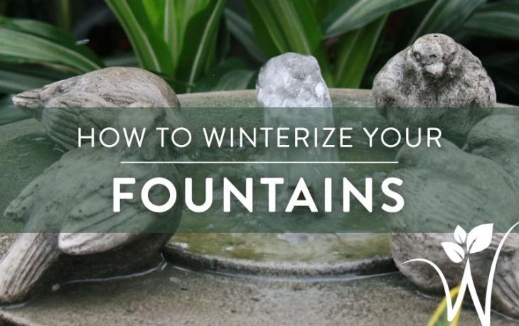 WinterizeFountains