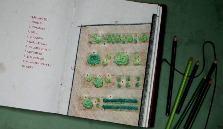 Veggie Garden Sketch Plan