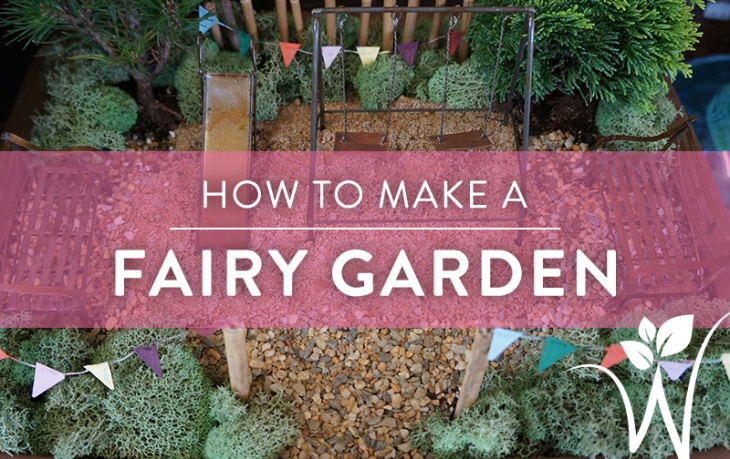 Fairy_garden_for_blog